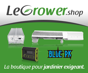 Le grower shop - carré
